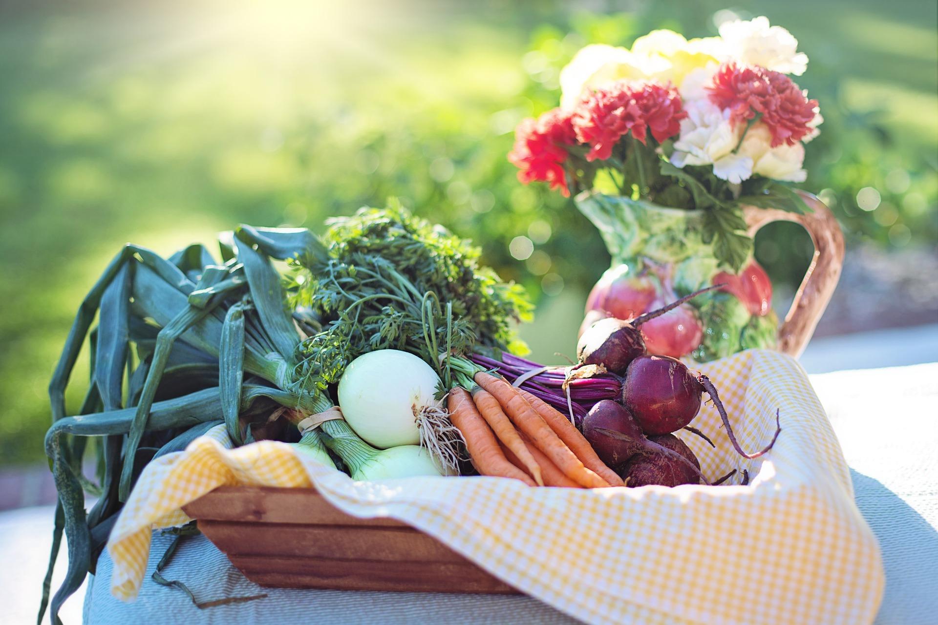Panier de légumes: poireaux, oignons cébettes, carrotes fanes, oignons rouges posé sur une table blanche dans jardin ensoleillé